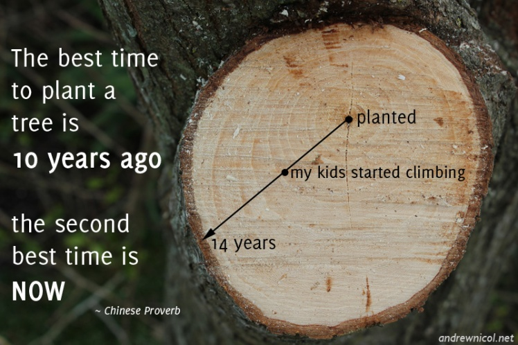 The best time to plant a tree is 10 years ago